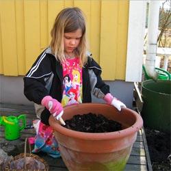 Thea planterar vårlökar